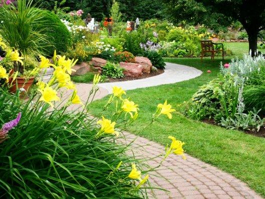 Садовые и декоративные растения из питомника – природный оазис на загородном участке