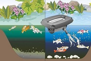 Аэраторы для пруда и водоема